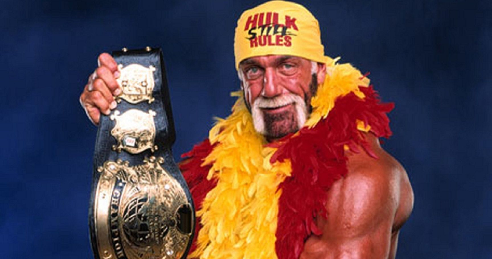 Hulk hogan wins-3643