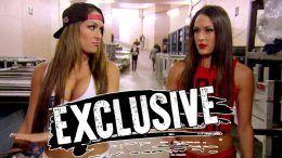 bella twins paris attacks wwe wrestling nikki brie