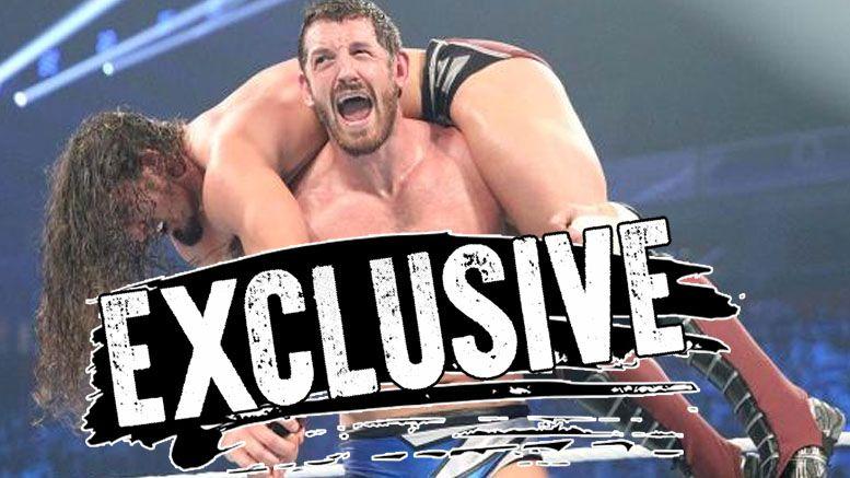 Wade Barrett wwe injury nerve neck stinger raw tlc disappearance