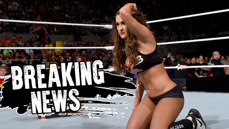 bella nikki neck surgery wwe e news rack attack wrestling total divas