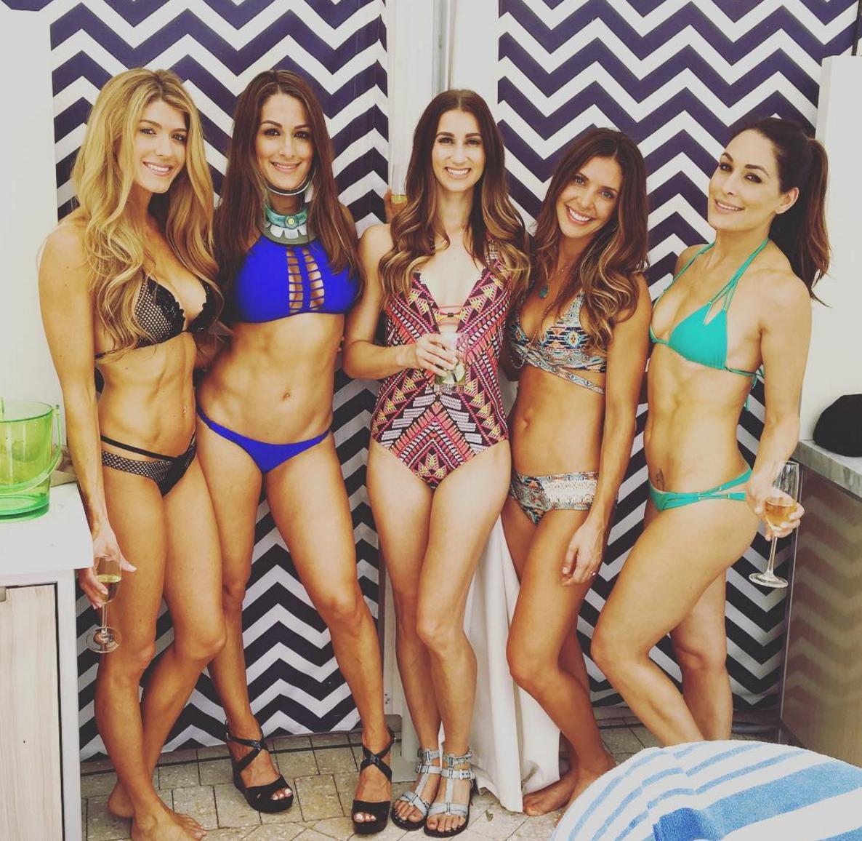 Brie and nikki bella bikini have