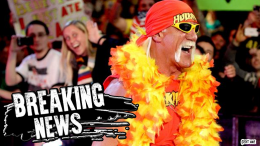 gawker hulk hogan lawsuit again sued