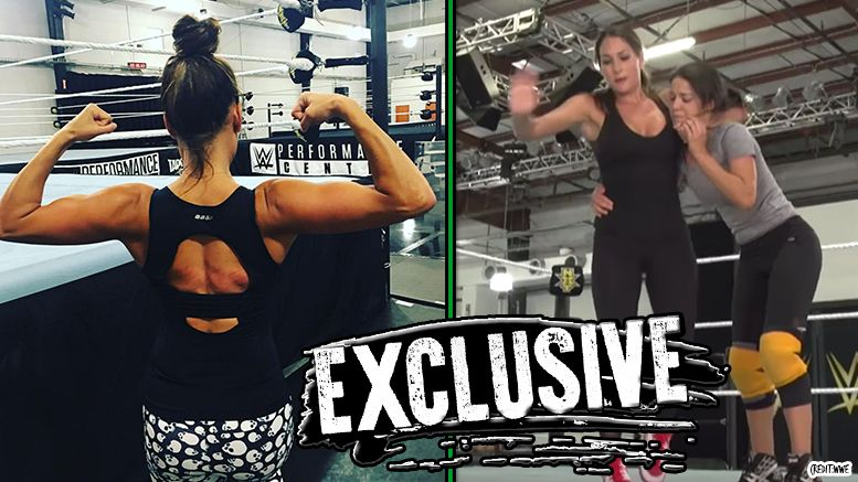 Nikki Bella neck injury not cleared training total divas twins