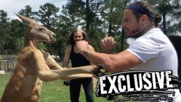 jeff hardy broken matt hardy zoo delete or decay tna impact wrestling kangaroo