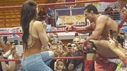proposed proposal paige alberto del rio wwe wrestler wrestlers total divas