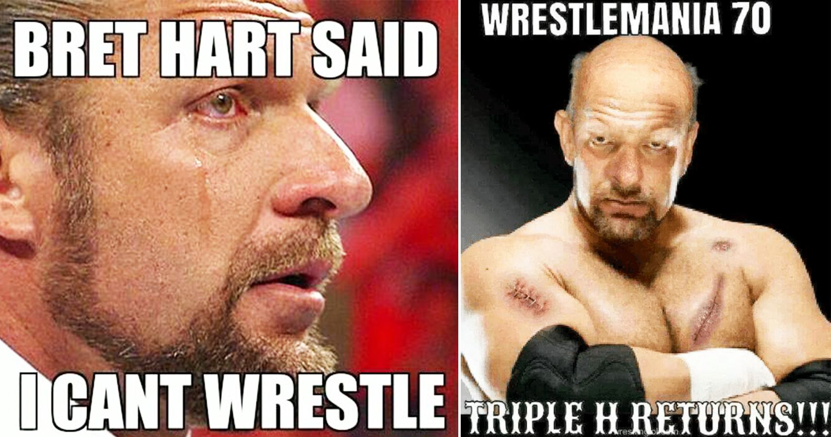 Top 15 Triple H Memes That Will Have You Rofl Thesportster