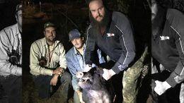 wild hogs braun strowman caught relocated wwe