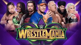 two wrestlemania 34 matches made official raw video
