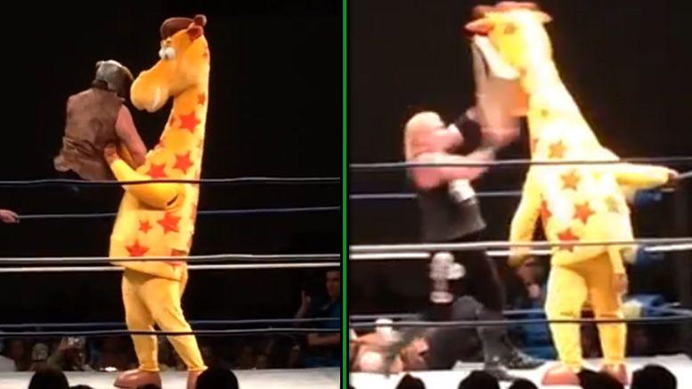geoffrey toys r us wrestling rumble eliminated elimination amazon package