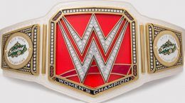 wwe wnba seattle storm championship title belt