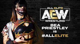 Bea Priestley, AEW, All Elite Wrestling, Brandi Rhodes, Cody Rhodes, Double or Nothing