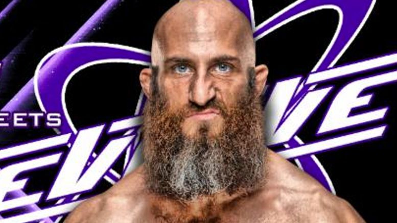 tommaso ciampa evolve appearances meet and greet