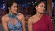bella twins nikki cyst brain retirement tonight show jimmy fallon herniated disc