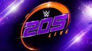 wwe, CWC, 205 Live, cruiserweights, cruiserweight championship, fox, USA network, wwe network
