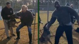 lacey evans apollo crews kalisto wwe dog attack military training video footage bite