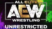 aew unrestricted all elite wrestling podcast tony schiavone aubrey edwards