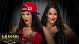 bella twins wwe hall of fame