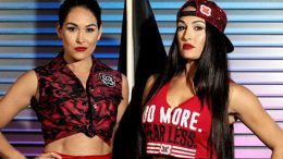 bella twins smackdown wwe hall of fame rumors