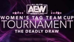 aew womens tag team tournament deadly draw announced summer