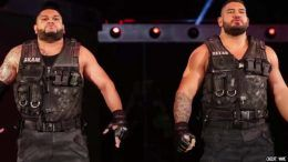 aop authors of pain akam rezar released let go fired wwe nxt