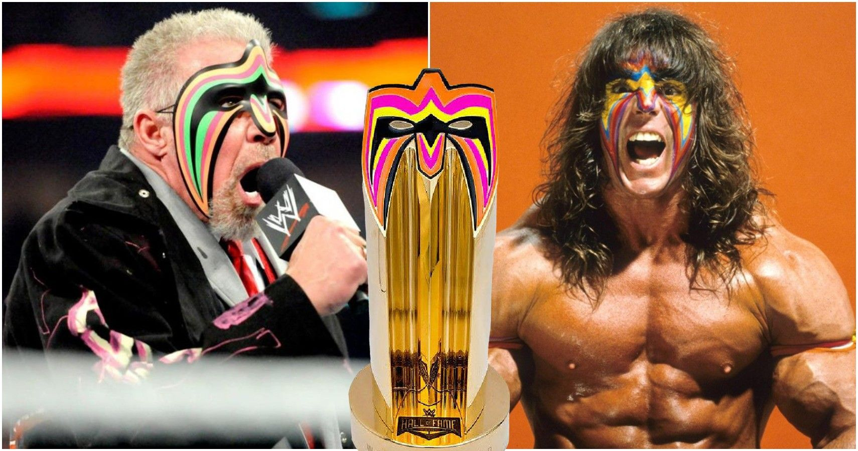 Ultimate Whitewashing: Fans Should Not Accept WWE's Ultimate Warrior Narrative